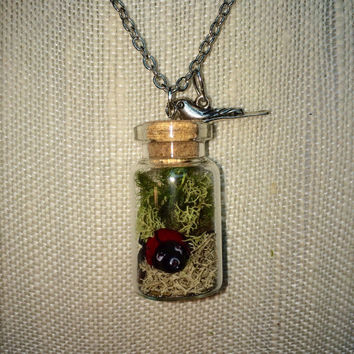 Terrarium Necklace, Terrarium Jewelry, Ladybug Terrarium, Ladybug Necklace, Ladybug Jewelry, Moss Jewelry, Moss Necklace, Bird Necklace,