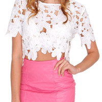 Absolute Lace Crop Top White