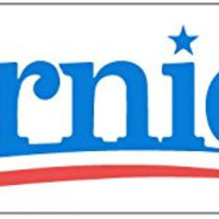 "BUMPER STICKER: Bernie '16 White Vinyl 3"" x 10"" Sanders Election Campaign"
