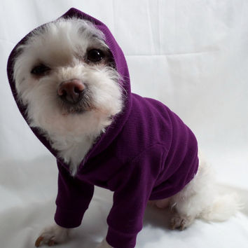 RockinDogs Ribbed Knit Hoodie for Dogs Several by Rockindogs