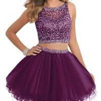 Short Two Piece Tulle Prom Dresses Beaded Bodice Homecoming Dress BD077