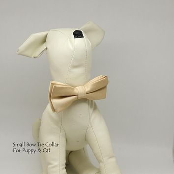 Ivory dog bow tie collar, Small bow tie collar, Puppy Collar, Cat collar, Cat bow tie collar