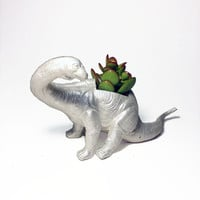Up-cycled Silver Apatosaurus Dinosaur Planter - With Succulent Plant