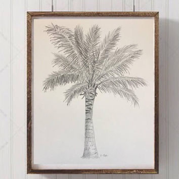Original Pencil sketch, Palm tree drawing, Palmtree Tropical graphite drawing, Nature black and white, Coastal artwork, Florida drawing