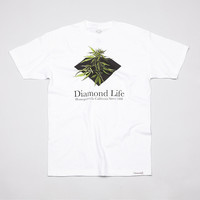 Flatspot - Diamond Homegrown T Shirt White