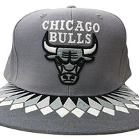 Mitchell & Ness Chicago Bulls Multi Team Colors Variant Snapback (Grey/OTC)