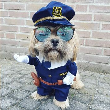 Cosplay costume for pets