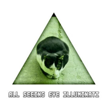 All Seeing Eye Illuminati Cat Wall Art  | Artist : Nitin Kapoor