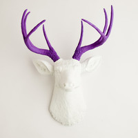 The Wyatt - White W/ Lavender Antlers Resin Deer Head- Stag Resin White Faux Taxidermy