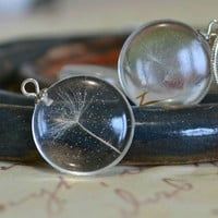 Romantic pendant with a real dandelion seeds inside
