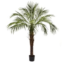 SheilaShrubs.com: 6' Robellini Palm Tree 5366 by Nearly Natural : Indoor Garden Decor Silk Trees & Plants