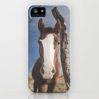 Free horse at the mountans iPhone & iPod Case by Guido Montañés