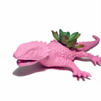 Up-cycled Baby Pink Lizard Planter - With Succulent Plant