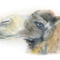 Camel Watercolor Painting Fine Art Print 8 x 10