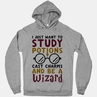 I Just Want To Study Potions Cast Charms And Be A Wizard