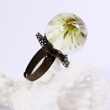 Statement Ring, Daisy flower ring, Terrarium flower Jewelry Gift for her ideas White Adjustable Ring Real field flower, Women's Accessories