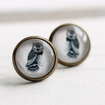Owl Earrings ... Vintage Illustrations Posts Studs