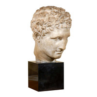 19th Century Classical Roman Bust in Plaster on Black Stone Base