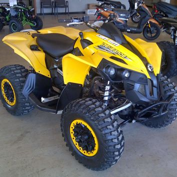 2009 Can Am Renegade 800R