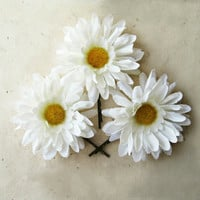 White Daisy Hair Pin. Gerber Daisy Bobby Pin. Free Spirited Spring Hair Accessories. Silk Gerbera Daisies for Festivals, Weddings, Prom.