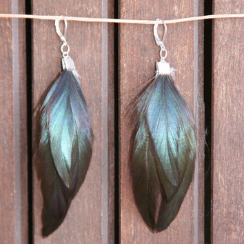 Emerald Green Iridescent Shine Black Feather Earrings