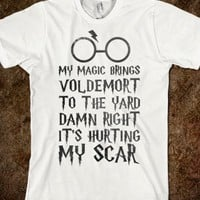 MY MAGIC BRINGS VOLDEMORT TO THE YARD