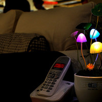 Avatar Led Night Light on Luulla