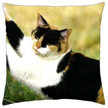 A calico cat statching on a tree - Throw Pillow Cover Case (18