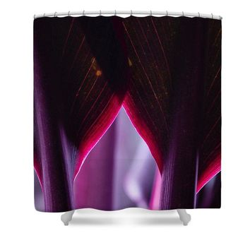 Purple Flower - Shower Curtain