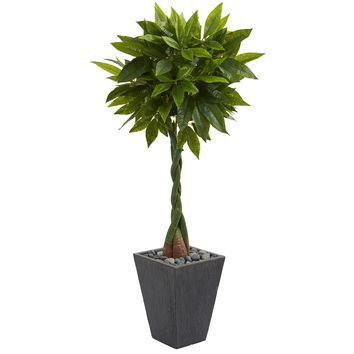 5' Money Artificial Tree in Slate Planter (Real Touch)