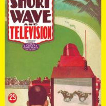 Short Wave and Television: Televised Horse Racing: Fine art canvas print (12 x 18)