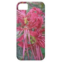 Spider Lily Bloom iPhone 5 Cover