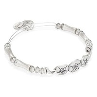 Women's Alex and Ani Expandable Sand Dollar Beaded Bangle - Rafaelian