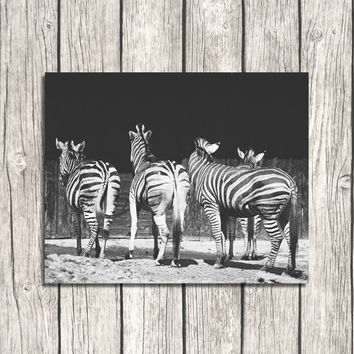 Zebra Black and White Photography, Zebras Photograph, Nature Wall Art, Printable Home Decor - INSTANT DIGITAL DOWNLOAD