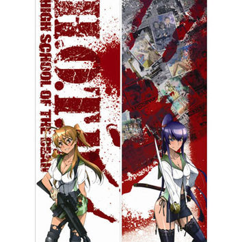 New Highschool of the Dead Dakimakura