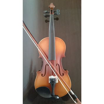 Student Acoustic Violin Full 4/4 Maple Spruce with Case Bow Rosin Classic Color
