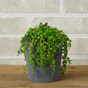 String of Pearls Faux Potted Plant