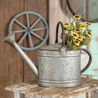 Galvanized Metal Oval Garden Watering Pitcher