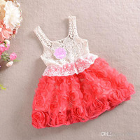 2014 New Fashion Girl Dress Baby Sleeveless Tutu Dresses Kids Princess Lace Dress Summer Children Embroidery Dresses Chiffon 5pcs/lot.