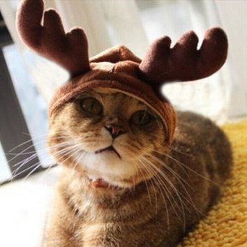 Christmas Costume Cat and Doggy Antlers