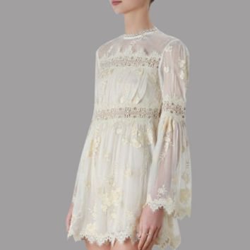Spring new fashion lace perspective hollow A word skirt Slim dress female