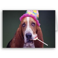 Basset Hound Birthday Cards from Zazzle.com