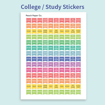 140 College Study Stickers / Printable Stickers / Flag Stickers / Rainbow Stickers / Erin Condren Planner / DIY Planner / School Planner