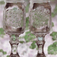Redneck Wine Glass Set of 6 by redesignedbyk on Etsy