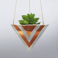 Succulent Gift, Hanging Pot, Air Planter, Concrete Planter, Mini Planter, Succulent Planter, Unique Planter, Wall Planter, Bronze - L