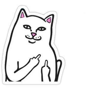 'Fk You Cat' Sticker by Skyliene