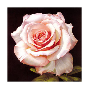 Pavilion of regimen wall painting decoration painting beauty salon hang painting flower without frame canvas for painting wall painting rose oil painting   01