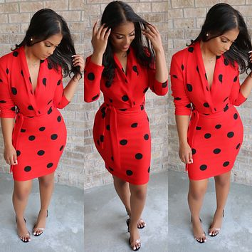 Lady Bug Polka Dress