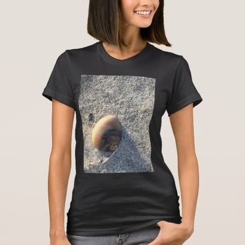 Seashell Photo T-Shirt