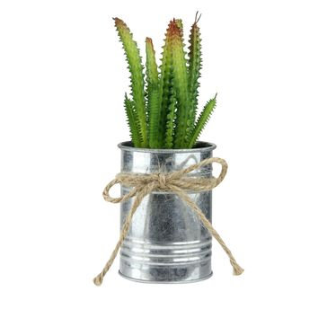 """7"""" Tropical Ombre Mini Artificial Spiky Greenery in Tin Planter with Twine Bow"""